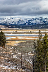 Hayden Valley Landscape (Where The Trails Take You Photography) Tags: yellowstone nationalpark yellowstonenationalpark haydenvalley autumn october snow mountains clouds dramaticlandscape canon river wherethetrailstakeyou canonef24105mmf4lisusm 5dsr 24105 24105mm