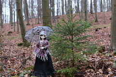 Night elf Elyssa for Christmas (JL_the_Lion) Tags: nightelfelyssaforchristmas bjd 13 sd doll leaf dolkot night elf elyssa pointed ears outdoor gothic umbrella wood forest winter