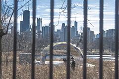 (jfre81) Tags: chicago lincoln park zoo fence bars skyline landscape cityscape man children kids public space 312 windy city urban james fremont photography jfre81 canon rebel xs eos