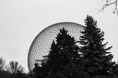 Dôme (Lionelcolomb) Tags: montréal québec canada dome biodome noirblanc noiretblanc blackwhite bw tree sky sphere geometric mature architecture canon 1200d sigma apple imac adobe lightroom winter