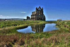 Whitby Abbey (Tony Worrall) Tags: yorkshire yorks scene scenery northyorkshire resort yorkshirephotos east eastern seasidetown holidays tourists coast north update place location uk visit area attraction open stream tour photohour photooftheday pics country item greatbritain britain british gb capture buy stock sell sale outside dailyphoto outdoors caught photo shoot shot picture captured ilobsterit instragram england photographsofwhitby whitbyphotos whitby abbey reflections wetreflection pool bluesky