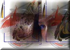 Portrait (Jocarlo) Tags: art afotando adilmehmood arttate adobe crazygeniuses crazygenius creative creativa creativeartphotography ella she flickrclickx flickraward flickrstruereflection1 flickrphotowalk flickr fotografía fotografias fotos gente gentes jocarlo retratos retrato rostros rostro woman women caras cara face faces portrait portraits personas