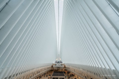 New-York: L'Oculus (christian.rey) Tags: nyc newyork city architecture oculus wtc inside sony alpha a7r2 a7rii 1635 usa