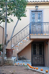 Bitter oranges in line... (st.delis) Tags: bitteroranges stairs tree doors yard athens hellas