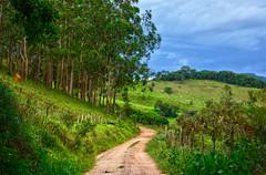Para Monte Verde (Márcia Valle) Tags: belmirobraga juizdefora minasgerais brasil brazil green verde nature natureza nikon d5100 verão summertime road estrada