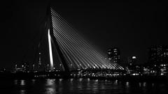 Erasmus bridge - Rotterdam (Michael Kalognomos) Tags: sony35mmf18oss sony urbanlandscape bridge light night cityscape cityphotography citylights blackandwhite bw holland netherlands rotterdam erasmus architecture cinematography sonya6400