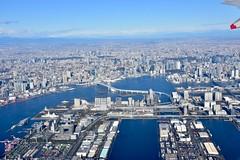 レインボーブリッジ (yuki_alm_misa) Tags: レインボーブリッジ rainbowbridge tokyo tokyobay お台場 東京 東京タワー 東京湾 a321272n aeroplane airbus airplane a321neo aircraft plane 航空写真 航空機 飛行機
