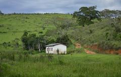 Rural landscape (Márcia Valle) Tags: belmirobraga juizdefora minasgerais brasil brazil green verde nature natureza nikon d5100 verão summertime roça casa house rural rurallandscape