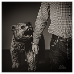 Dog walk (_Matt_T_) Tags: selfie dailyindecember af540fgz smcpdfa50mmf28macro toy 365 westcott cactusv6 bear bw punishthedeednotthebreed