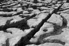 weathering (albert.goesswein) Tags: struktur structure blackandwhite natur nature verwitterung weathering schwarzweis