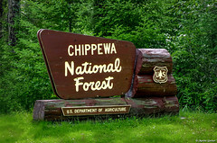 Chippewa National Forest (M@rtha Decker) Tags: chippewa national forest usda usfs us forestservice service north woods nature outdoors outside natural trees bigfork minnesota minn mn highway 6 scenic scenery historic history ojibwe indians native american name pentax k30 dslr marthadecker onlyinmn upnorth sign tamron 18200mm zoom lens