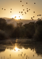 Final Fiesta Sunrise, 10.13.19 (enchanted_wx) Tags: abqnws albuquerque abqwx abq abqwestside autumn balloon ballooning abqballooning albuquerqueballoonfiesta aibf massascension balloonreflections wetlands reflections pond canon canon6d rokinon rokinonlenses rokinon135mmf2 sun sunrise sunstar dukecity fall fall2019 golden goldenlandscape goldenhour landscape landofenchantment nm newmexico nmwx nmskies newmexicotrue nmlandscape nmtrue october october2019 sky trees bosque abqbosque weather wx nmwx2019 yearinreview yearinreview2019 yourbestoftoday z