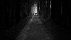 Hike in the forest (matwolf) Tags: silhouette black white noir noiretblanc dark foret forest wald menschen people outside mono monochrome schwarzweis