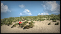 hide & seek (Fr@ηk ) Tags: frnk petten beach netherlands northsea weather nobra topless nudists women adult parasol red grass dunes sand panorama landscape sky nature cloud water summer hill vacation outdoors soil desert vegetation field sea plant dune coast outdoor noperson standing sitting man shoreline naturalenvironment clouds travel land cloudy photography dirt walking grassfamily sandy bush fairweather plantcommunity kite woodland scenic flying grassy horizon large countryside seashore wellhidden hideandseek suntan tanned sun mrtungsten62 fkk rijam32