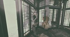Moonlight Sonata (larisalyn (Rachel)) Tags: blonde cello secondlife vintage