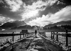 Stay Alive (freundsport) Tags: blackandwhite fence sun light clouds shadow fencefriday girl sony way mountains landscape