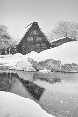 Snowy valley (小川 Ogawasan) Tags: japan japon winter gifu snow shirakawago 白川郷