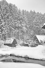 Snowy valley (小川 Ogawasan) Tags: japan japon winter gifu snow shirakawago 白川郷