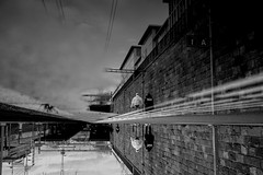1A (maekke) Tags: zürich wiedikon trainstation reflection puddlegram bw noiretblanc 35mm fujifilm x100f ch switzerland pointofview pov couple sbb zvv rails railways publictransport 2019