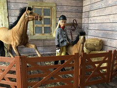 In the stable (Foxy Belle) Tags: doll skipper barn horse learn ride learning vintage diorama scene hay wooden 16 scale playscale barbie clover merry belle foal mother flocked brown mane
