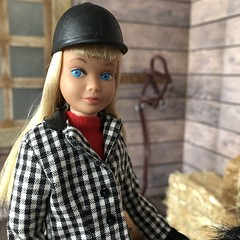 Skipper (Foxy Belle) Tags: doll skipper barn horse learn ride learning vintage diorama scene hay wooden 16 scale playscale barbie