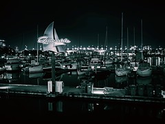 Marina (World-viewer) Tags: excellent flickraward award neonsign canada bc vancouver pulse blackandwhite monochrome mono bw artistic art docks dock harbour harbor neon mbpictures explore wander travel ngc plus iphone8plus iphone8 iphone nightshot nightphotography night skyline urban boat boats marina marine street city sign signs
