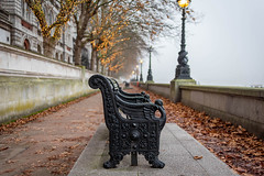 Morning (100 Real People) Tags: nikond750 nikkor35f20 bokeh thames southbank mist river london bench iron lights autumn leaves earth fog haze housesofparliament westminster