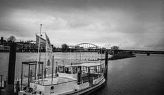 "Deventer ""board walk""  view Wilhelmina bridge (Ric Evers) Tags: gelderland deventer ilford4 zenit blackandwhite bw film35mm documentarystyle ijssel river"