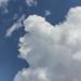 Sky Puff 01