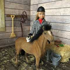 The new foal (Foxy Belle) Tags: doll skipper barn horse learn ride learning vintage diorama scene hay wooden 16 scale playscale barbie foal clover brown flocked black mane