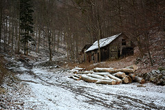 abandoned cottage (Slávka K) Tags: forest trees moretrees snow december 2019 trip walking winter cottage wooden house brown