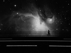 The stars are best seen in the darkest moments. (Fan.D & Dav.C Photgraphy) Tags: no people photography night sky star space outdoors outer nature galaxy astronomy beauty in landscape scenery scenics milky way constellation travel blackandwhitestreetphotography blackandwhite blackandwhitephotography