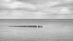 Wattenmeer (blichb) Tags: 2019 deutschland insel leica leicaq leicasummilux11728 meer norddeutschland nordsee schleswigholstein sylt wattenmeer blichb sommer