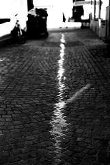 Legless (Leica M6) (stefankamert) Tags: street analog analogue water people blur blurry noir noiretblanc cobblestones light leica m6 leicam6 summicron summicrondr dualrange stefankamert blackandwhite blackwhite kodak trix tones reutlingen 122019 legless