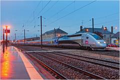 C'était déjà une dernière (Bapt' G.) Tags: tgv lyria inoui livrée record du monde vitesse rail dole bosse lausanne paris train sncf 4402 pos 9272 lutétia
