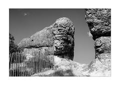 fence on the rocks (Armin Fuchs) Tags: arminfuchs nomansland fence hff rocks grass anonymousvisitor thomaslistl wolfiwolf jazzinbaggies niftyfifty