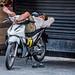 2019 - Vietnam - Ho Chi Minh City - 37 - Motorcycle Siesta