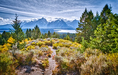 Signal Mountian Vista - HDR (byron bauer) Tags: byronbauer grandtetons hdr highdynamicrange landscape painterly scrub grass trees path lake mountains sky clouds afternoon nationalpark wyoming signalmountain topaz simplify snow trail green yellow blue
