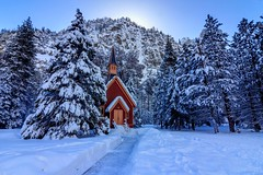 Yosemite Valley Chapel, Winter (Rod Heywood) Tags: yosemite yosemitenationalpark yosemitevalley yosemitechapel winter snow christmas church california trees nationalparks christmastree winterlandscape mountains winterscene snowy
