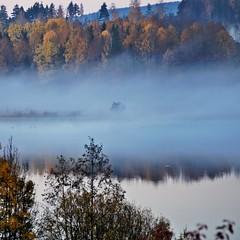 Autumn morning (Stefano Rugolo) Tags: stefanorugolo pentax k5 kmount smcpentaxm100mmf28 autumn manualfocuslens manualfocus manual sweden lake fog mist