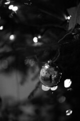 Xmas time - Scuola Materna Veneri (Reggio Emilia) - December 2019 (cava961) Tags: xmas scuolamaternaveneri analogue analogico monochrome monocromo bianconero bw canon superpan200