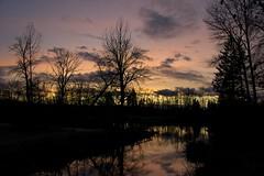 Sunset over the pond (JSB PHOTOGRAPHS) Tags: jsb1337 sunset pond trees sky reflections reflection altonbakerpark eugeneoregon nikon bridge d800 28300mm