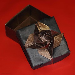 Origami Rose Box (Shin Han-Gyo) (De Rode Olifant) Tags: origami origamibox origamirosebox 3d marjansmeijsters shinhangyo diagrams koreanconventionbook2015 rose origamirose paper papiroflexia origamirosebox16section box