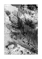 fence down the hill (Armin Fuchs) Tags: arminfuchs nomansland fence hff shadows anonymousvisitor thomaslistl wolfiwolf jazzinbaggies niftyfifty