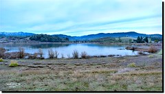 FORD BOND DECEMBER 2019 (jawadn_99) Tags: sutherlin oregon tranquil quiet calm static peaceful usa park lake birds water trees reflections interrestingness clouds fallseason birdswaching panorama bond explore frost