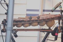 Xylophones, Gongs, etc. [Percussive Idiophones] 10: Balafon (of Lindigo musician) (KM's Live Music shots) Tags: musicalinstrument hornbostelsachs idiophone balafon westafrica lindigo thescoop