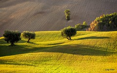 Marche countryside (luigi.alesi) Tags: marche sanseverino italia italy macerata san severino colmone paesaggio landscape scenery natura nature colline hills campagna country countryside autuno autumn luce light colori colors ombre shadows nikon d7100 raw
