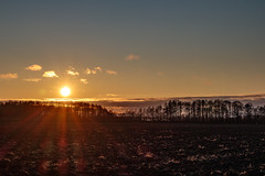 Zachód za płotem (Tymcio Piotr) Tags: kal sunset field lake trees