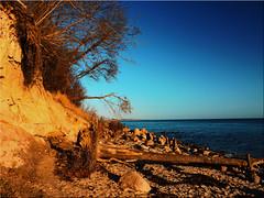 On the steep coast at Grömitz on the Baltic Sea (Ostseetroll) Tags: geo:lat=5412742997 geo:lon=1093687307 geotagged deu deutschland grömitz kagelbusch schleswigholstein ostseeküste balticsea steilküste cliff balticseacoast olympus steepcoas em10markii