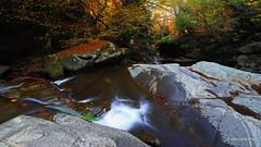 autumn symphony... (devadipmen) Tags: autumn bursa kemalpaşa landscapephotographer nationalpark naturephotographer rock stream suuçtuşelalesi suuçtuwaterfall türkiye waterfall woods